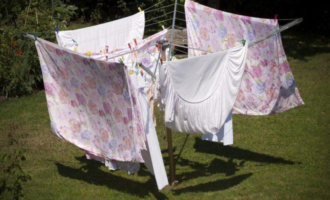 Wäschespinne